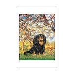 Spring & Cavalier (BT) Mini Poster Print