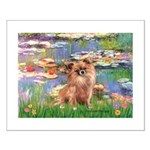 Lilies / Chihuahua (lh) Small Poster