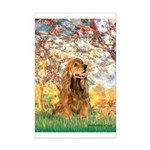 Spring /Cocker Spaniel (buff) Mini Poster Print