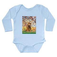 Spring /Cocker Spaniel (buff) Long Sleeve Infant B