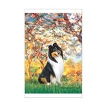 Spring / Collie Mini Poster Print