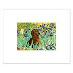 Irises & Dachshund Small Poster