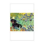 Irises & Dachshund (BT4) Mini Poster Print