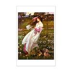 Windflowers / Dachshund Mini Poster Print
