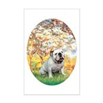 Spring/ English Bulldog (#9) Mini Poster Print