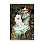 Ophelia / Eskimo Spitz #1 Mini Poster Print