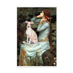 Ophelia / Italian Greyhound Mini Poster Print
