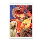 Mandolin Angel /Italian Spino Mini Poster Print
