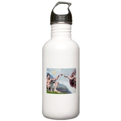 Creation/ Keeshond Stainless Water Bottle 1.0L