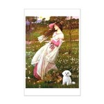 Windflowers / Maltese Mini Poster Print