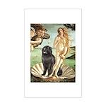 Venus & Newfoundland Mini Poster Print