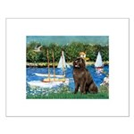 Sailboats & Newfoundland Small Poster