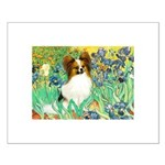 Irises / Papillon Small Poster