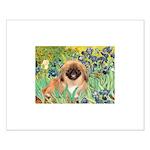 Irises / Pekingese(r&w) Small Poster