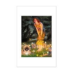 Fairies / Pekingese(r&w) Mini Poster Print