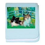 Bridge / 2 Pomeranians baby blanket