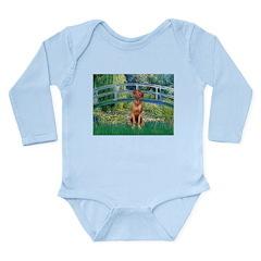 Garden / R Ridgeback Long Sleeve Infant Bodysuit
