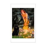 Fairies & Schipperke Mini Poster Print