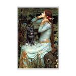 Ophelia / Schipperke #4 Mini Poster Print