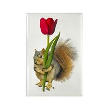 Squirrel Red Tulip Rectangle Magnet