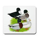 Call Duck Quartet Mousepad