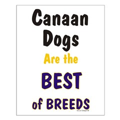 Canaan Dog Best Breed Small Poster