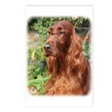 Irish Setter 9Y209D-090 Postcards (Package of 8)