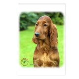 Irish Setter 9T004D-349 Postcards (Package of 8)