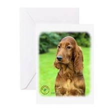 Irish Setter 9T004D-349 Greeting Cards (Pk of 10)