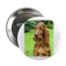 "Irish Setter 9T004D-349 2.25"" Button (10 pack)"