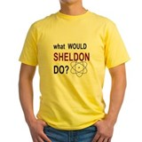 What Would Sheldon Do? T