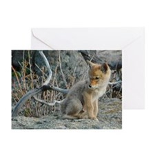Lone Man Out Greeting Cards (Pk of 10)