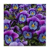 Pansies Tile Coaster