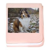 Sable Sheltie Hiker baby blanket