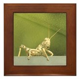 Grasshopper Framed Tile