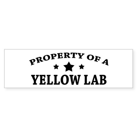 Property of a Yellow Lab Bumper Sticker