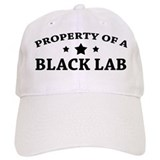 Property of a Black Lab Baseball Cap