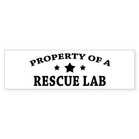 Property of a Rescue Lab Sticker (Bumper)