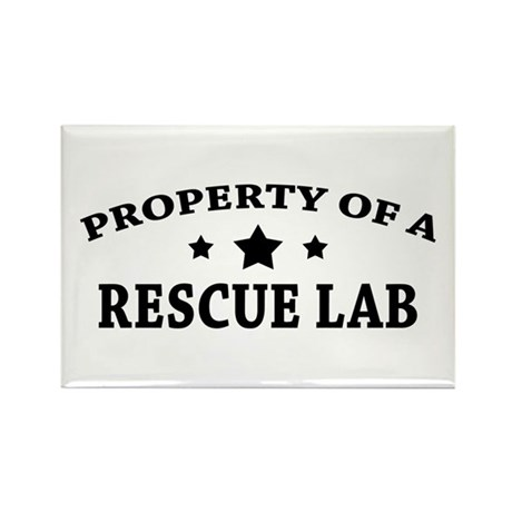 Property of a Rescue Lab Rectangle Magnet