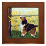 Rough Collie Sable Framed Tile