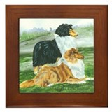 Rough Collie Pair w Tri Framed Tile