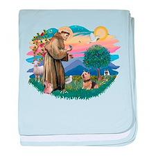 St Francis #2 / Norwich T. baby blanket