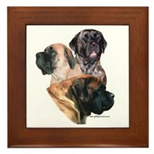 Mastiff 159 Framed Tile