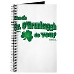 St Patrick's Day t-shirt, Mr Journal