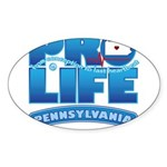 Pro-Life, from conception to Sticker (Oval)