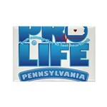 Pro-Life, from conception to Rectangle Magnet (10