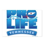Pro-Life, from conception to Postcards (Package of