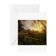 Cute Quarter horse Greeting Card