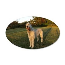 Bright Wolfhound 22x14 Oval Wall Peel