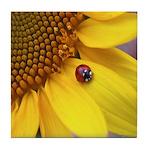 Ladybug on Sunflower Tile Coaster